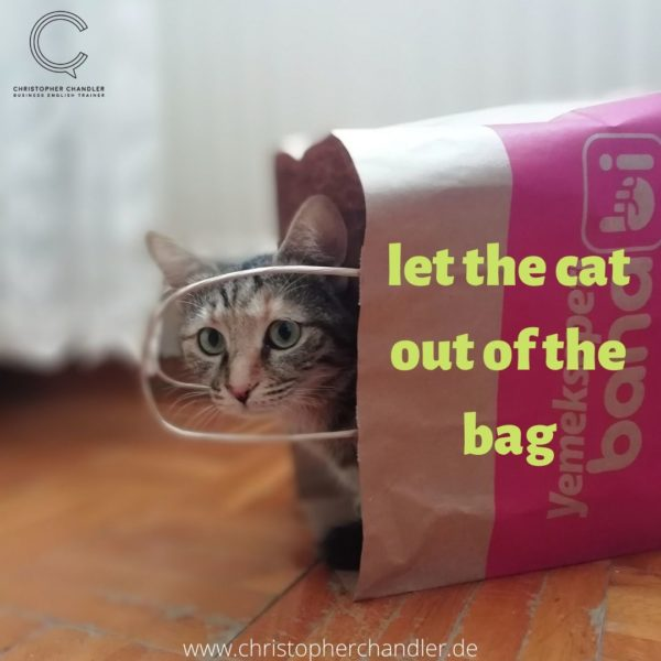 let the cat out of the bag idiom