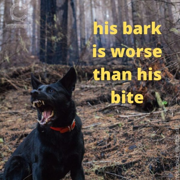 bark is worse than his bite